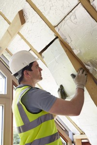 The Role Of Insulation In Mold Growth