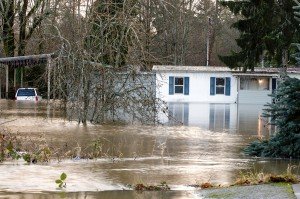 What Should You Do If Your Basement Floods?