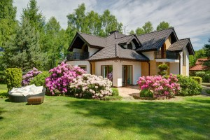 Bad Landscaping Can Cause Problems For Your Home