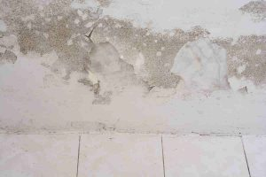 How To Prevent Mold In Your Basement