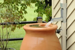 What To Consider Before Buying Rain Barrels