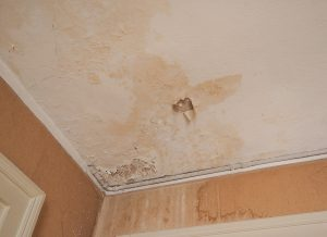 Water Damage Prevention To Do This Summer
