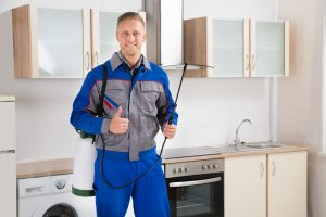 Mold Remediation Bel Air
