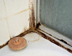 Why Preventing Basement Leaks Is So Important