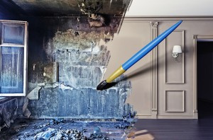 Mold Remediation Protects The Most Vulnerable Members Of Your Family
