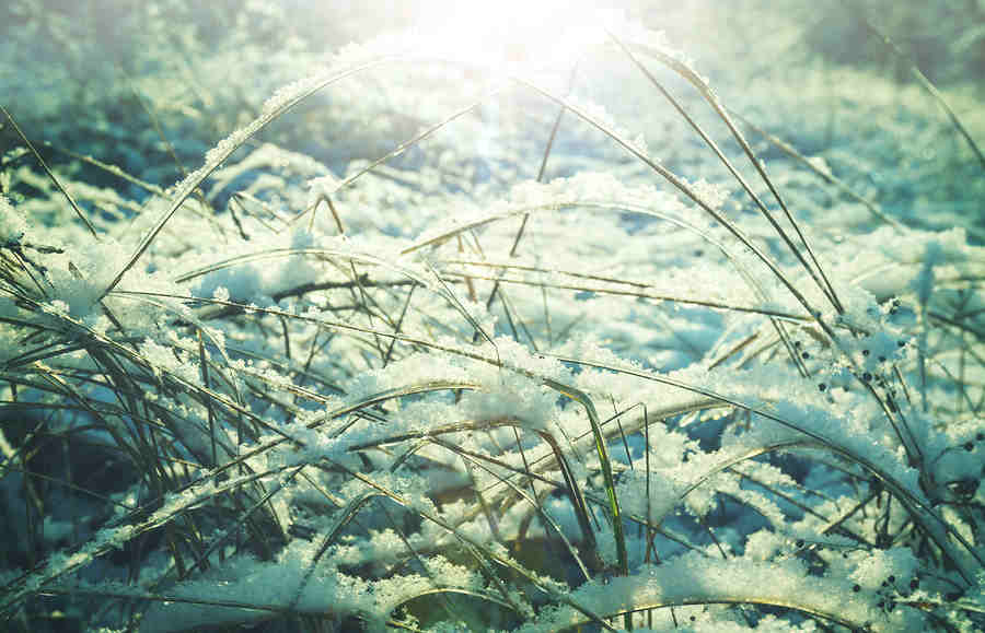 Understanding The Deep Freeze And Your Basement Health