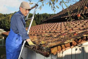 How Your Gutters Affect Your Basement