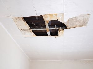 The 5 Warning Signs Of Foundation Damage