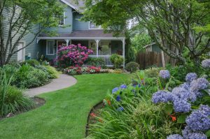 Your Garden May Be Harming Your Foundation