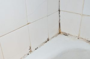 3 Places To Look For Mold