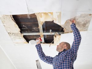 Mold Remediation Montgomery Village