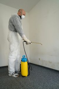 Mold Remediation Belcamp