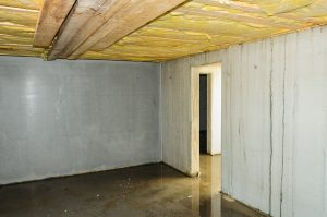 Basement Waterproofing Forest Hills