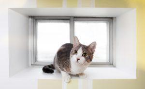 Waterproofing Your Window Well